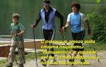 Что такое скандинавская ходьба с палками
