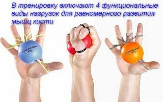 Комплекс упражнений для кистей рук