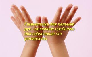 Комплекс гимнастики для пальцев рук