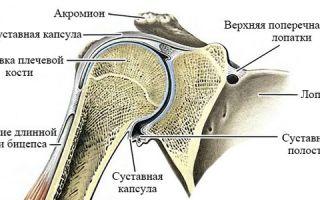 Эффективное лечение разрыва связок плечевого сустава