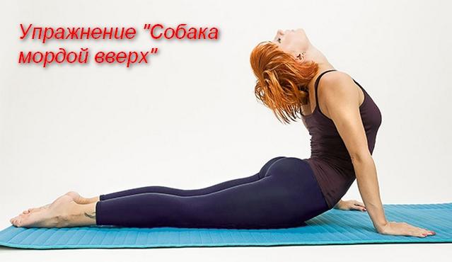 женщина лежа на животе выпрямила руки и прогнула спину