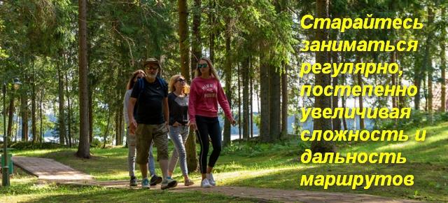группа людей идет по лесу