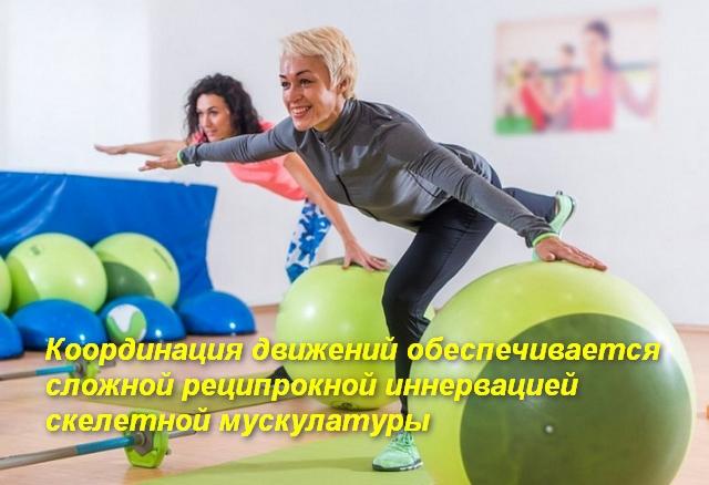 2 женщины стоят на одной ноге и рукой держатся за фитбол