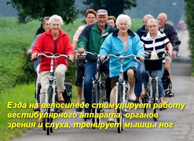 группа людей едет на велосипеде